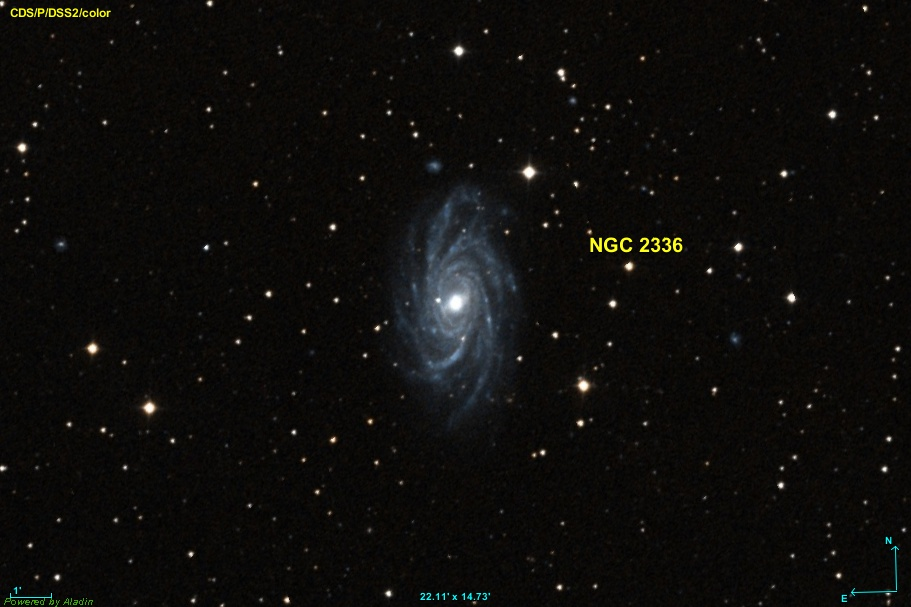 NGC 2336 — Wikipédia