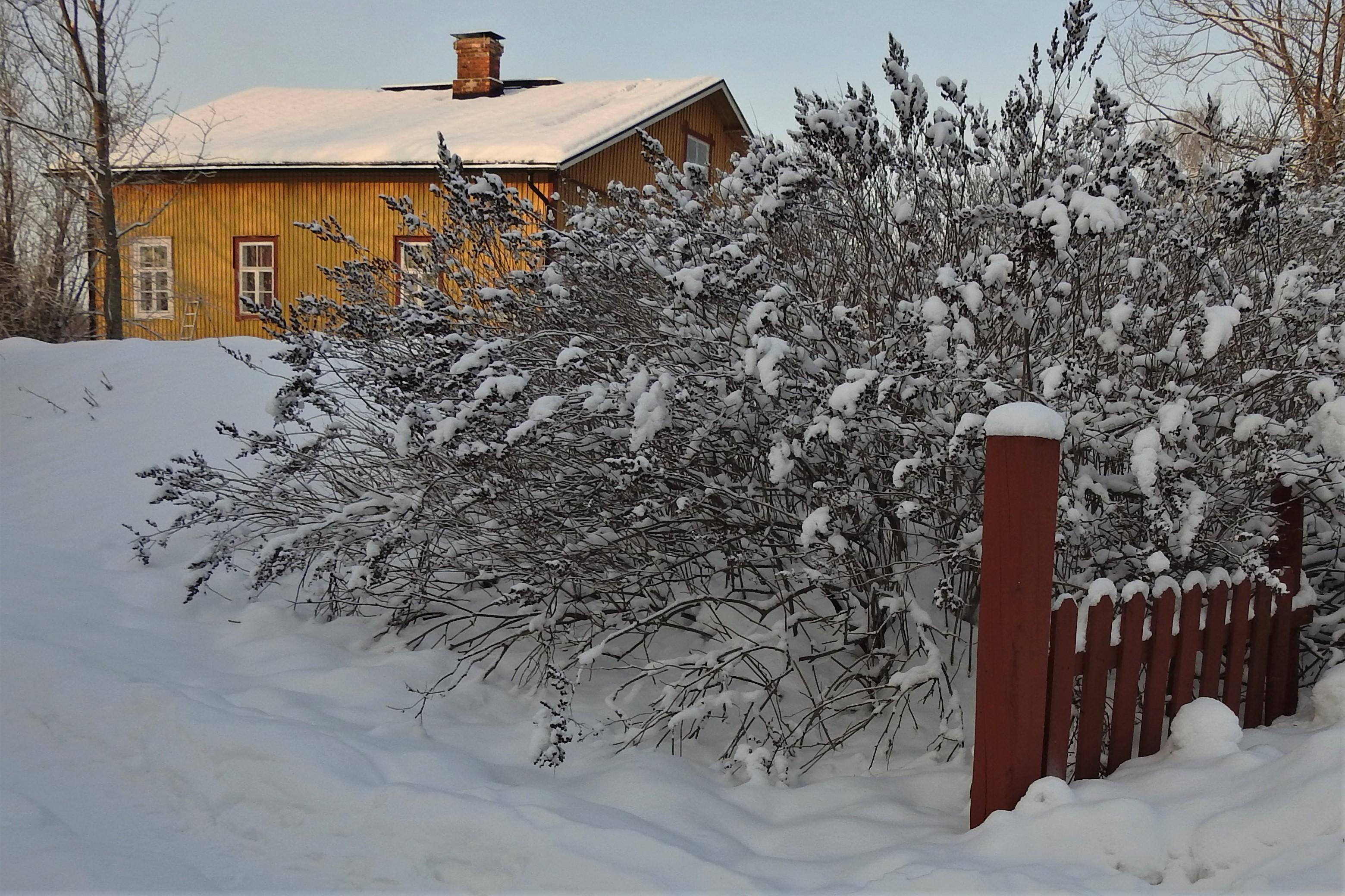 Naissaari talvella.jpg