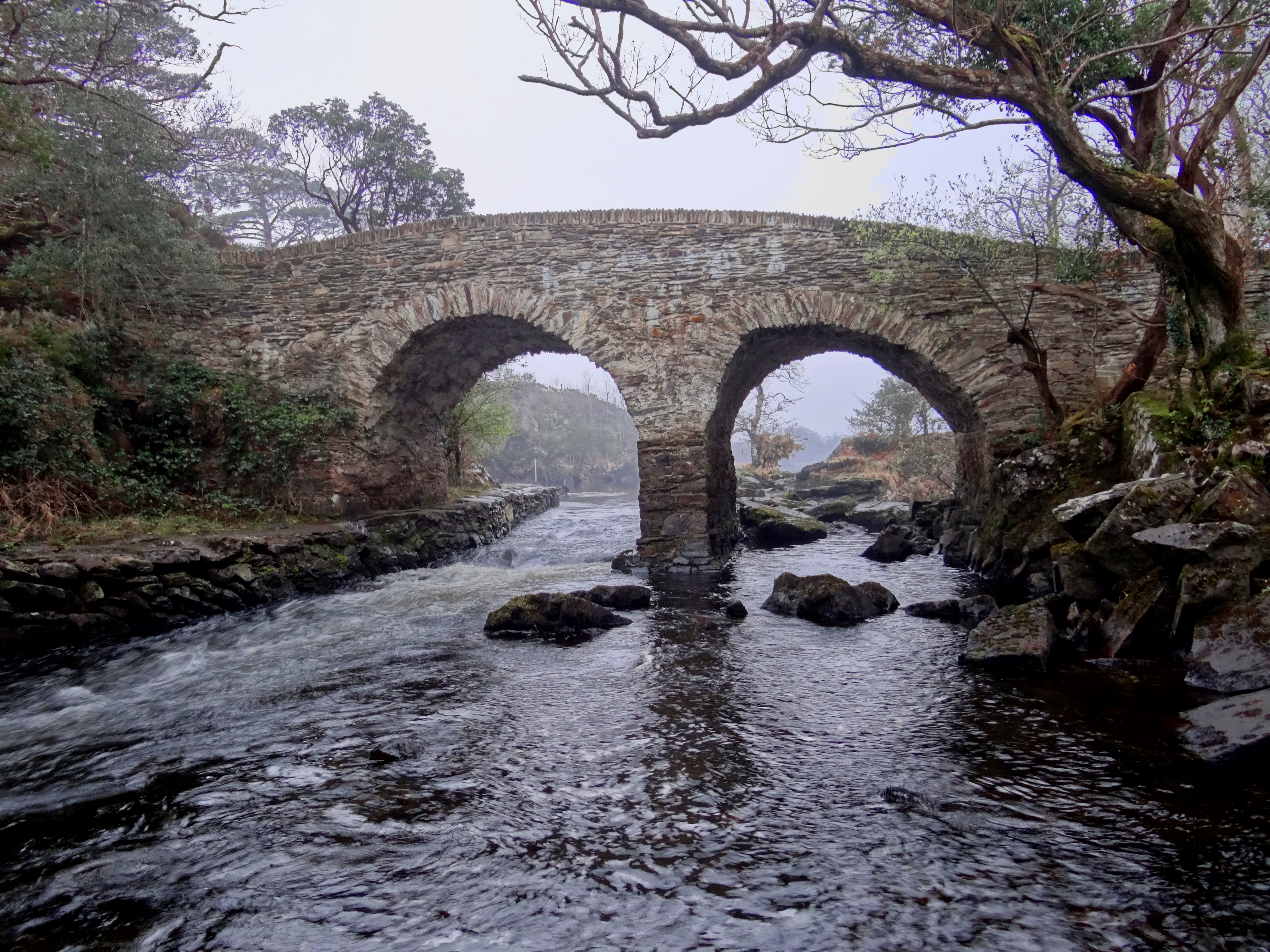 Ireland killarney national park