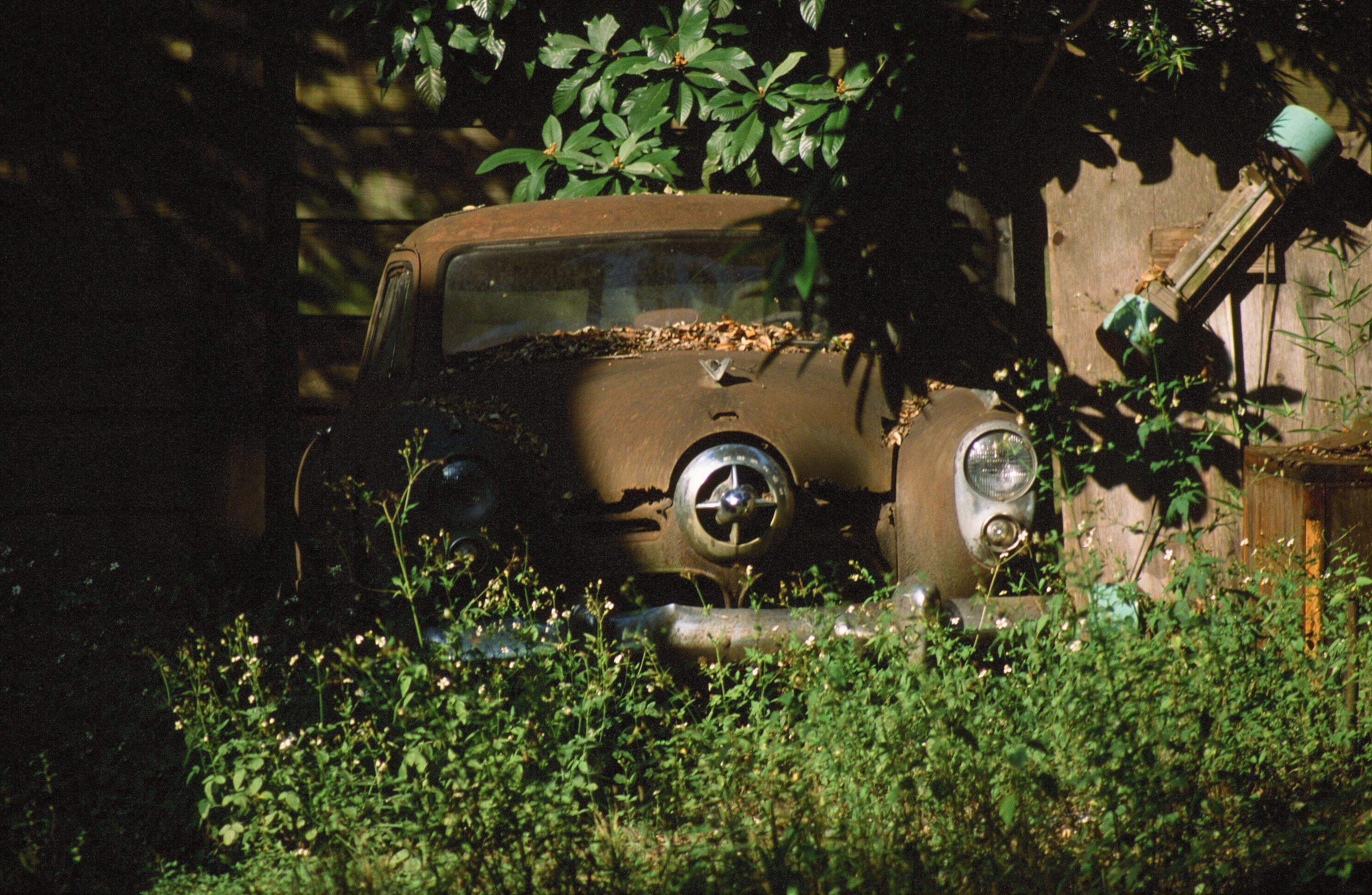 Old Car Weeds