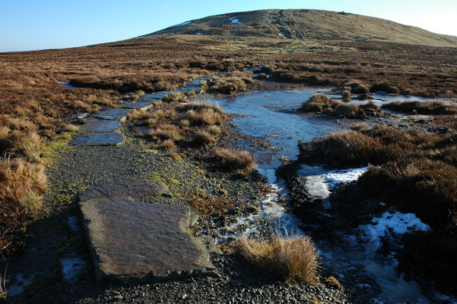 The Brecon Beacons Way, near Hay Bluff - geograph.org.uk - 1075245