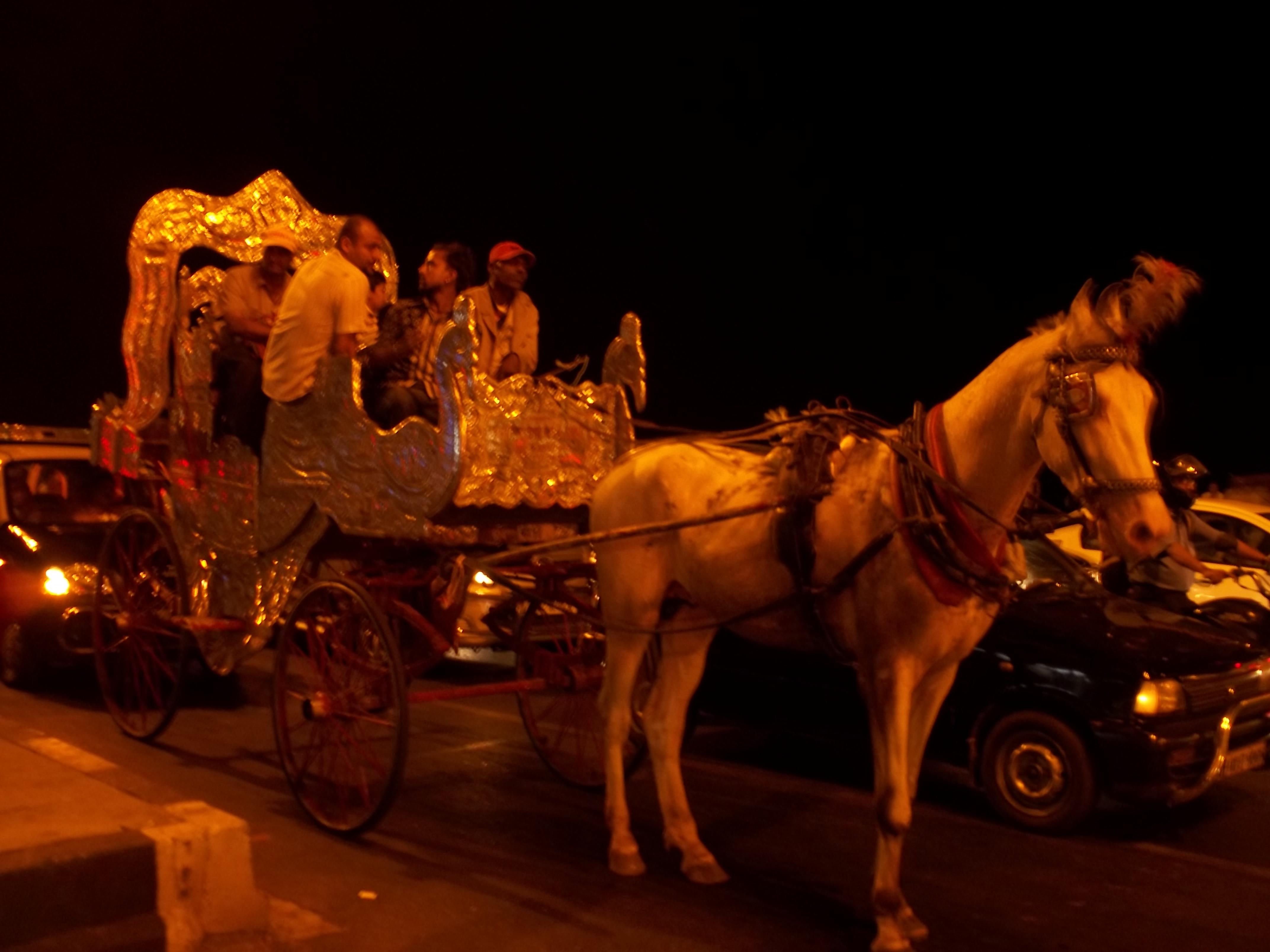 Victoria Carriage at Marine drive Mumbai.jpg