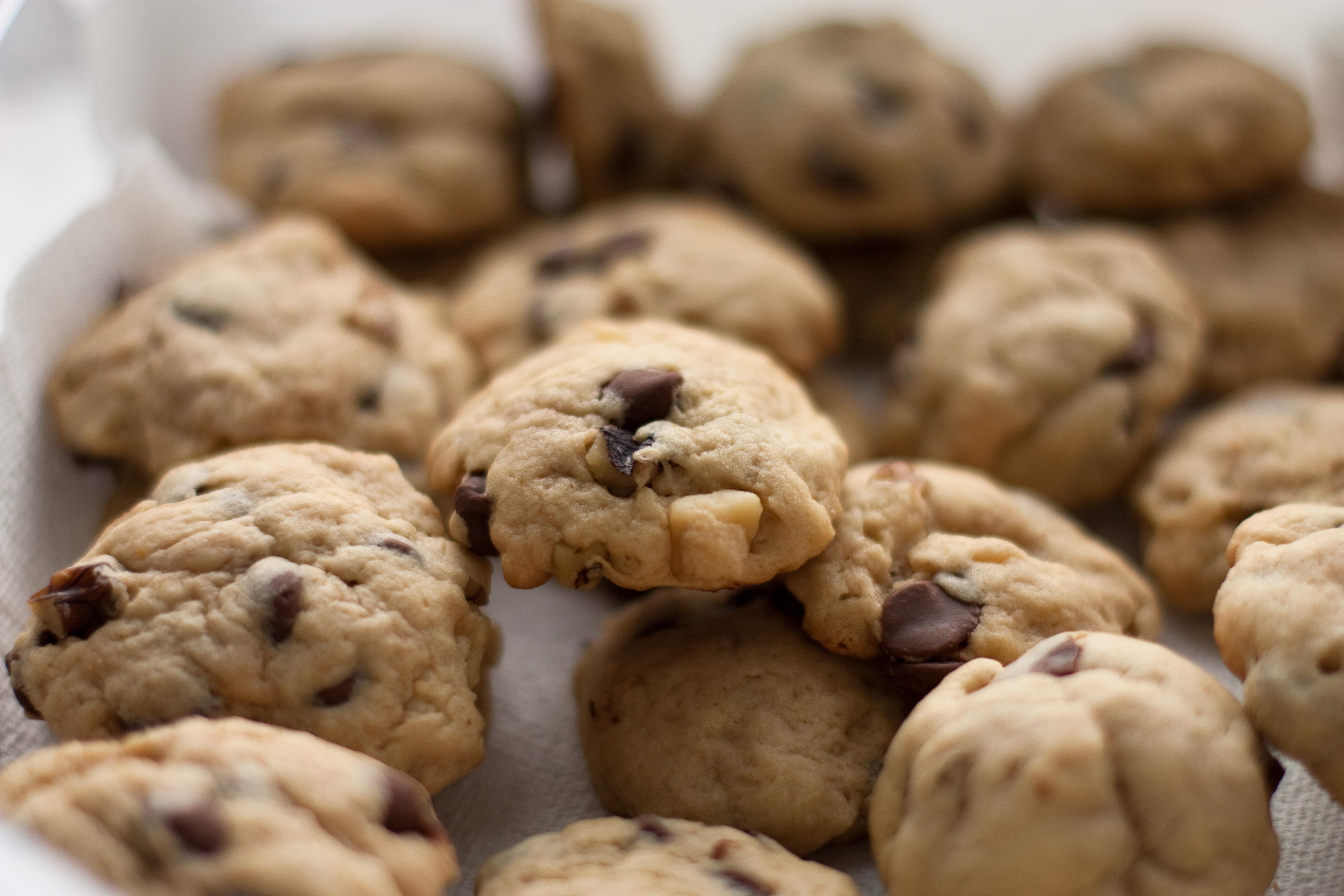 File:Walnut chocolate chip cookies, May 2009.jpg - Wikimedia Commons