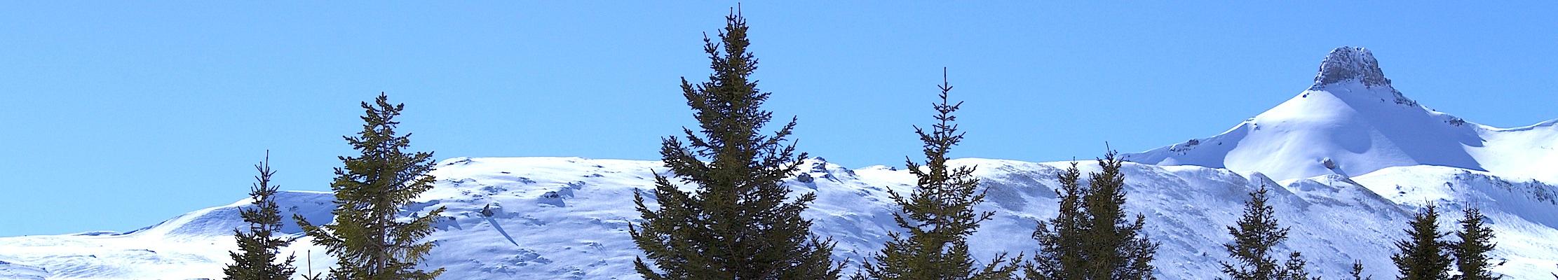 25 февраля (10 марта) 2015. Швейцарские Альпы.