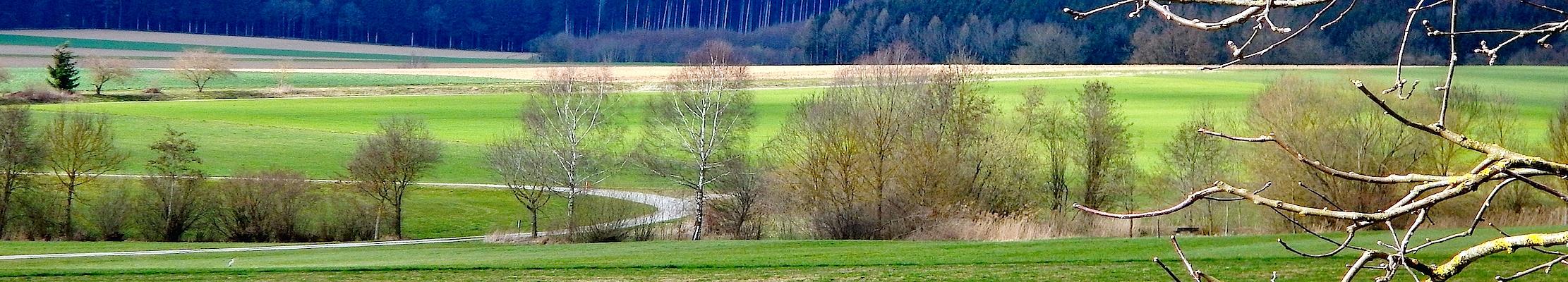 17 марта (30 марта) 2017. В этот день 2016 года в южной Германии.