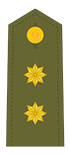 Teniente Coronel (XO)
