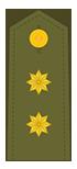 Teniente Coronel (XO)