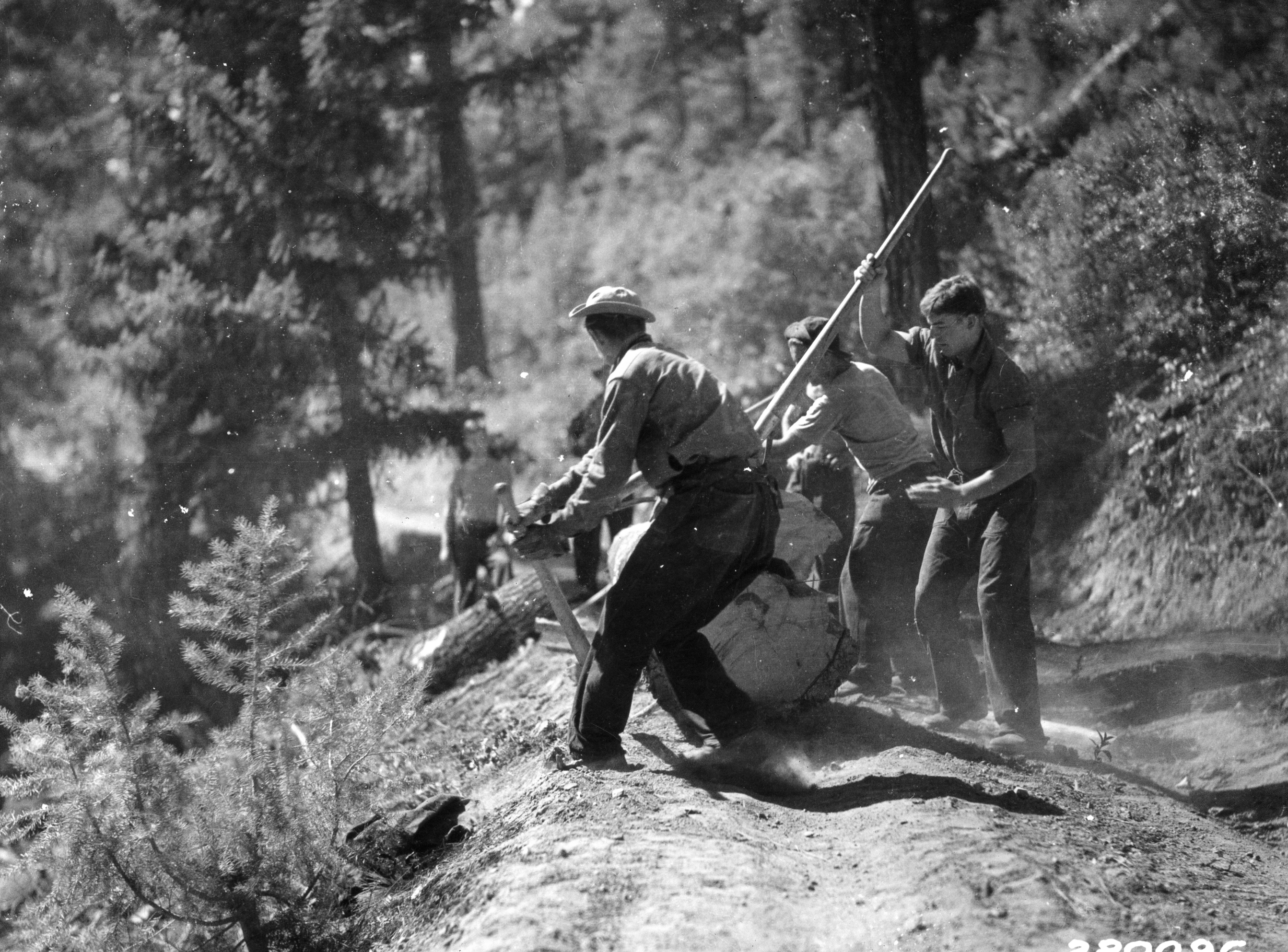 File:CCC crew clearing a roadside, Boise National Forest ...