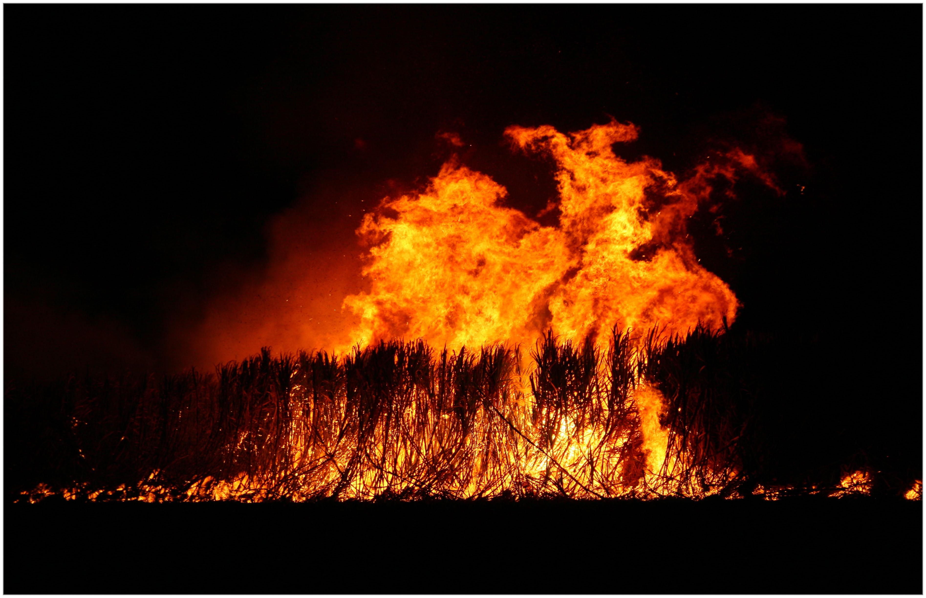 File:Cane fire in the Burdekin.jpg - Wikimedia Commons