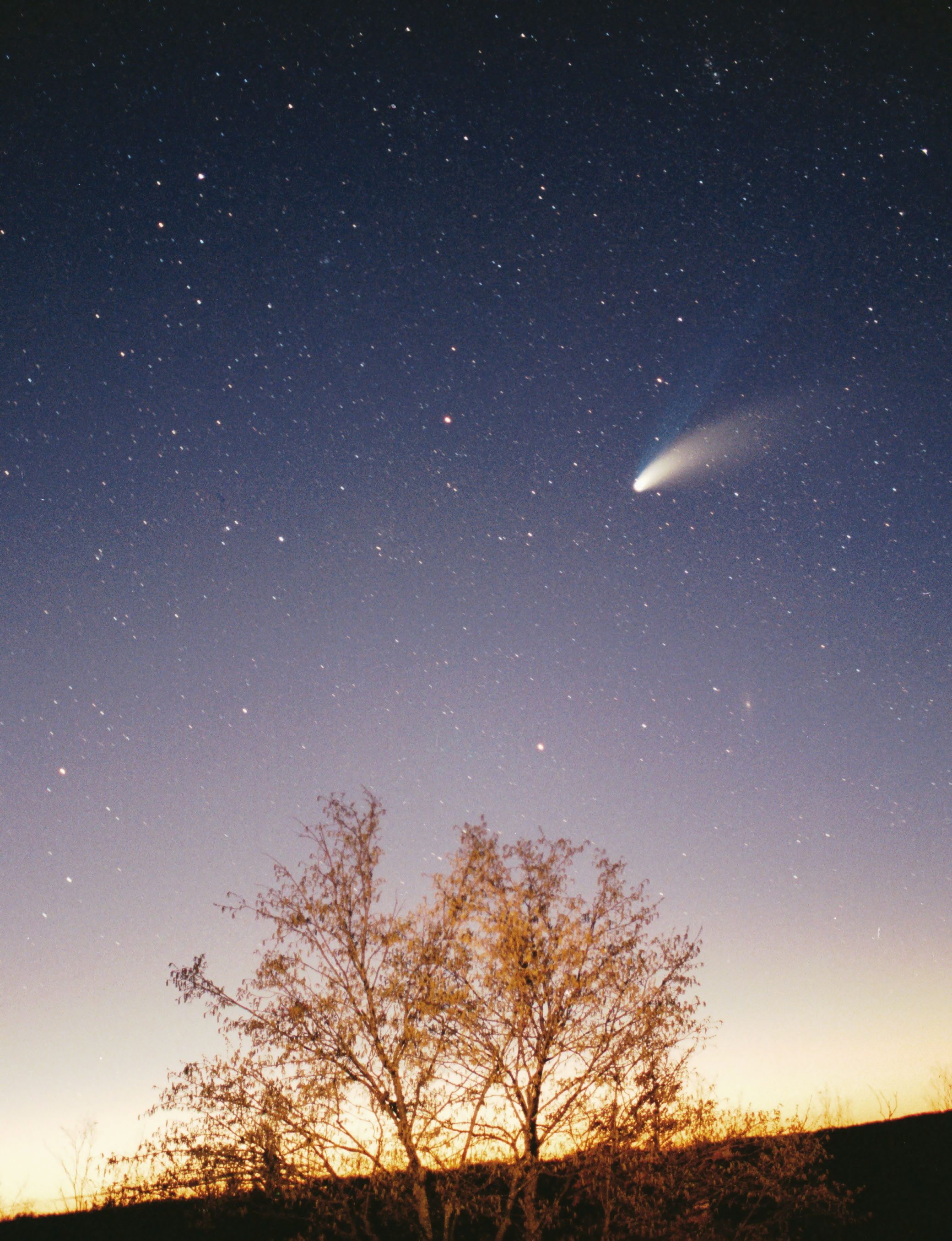 http://upload.wikimedia.org/wikipedia/commons/d/df/Comet-Hale-Bopp-29-03-1997_hires_adj.jpg