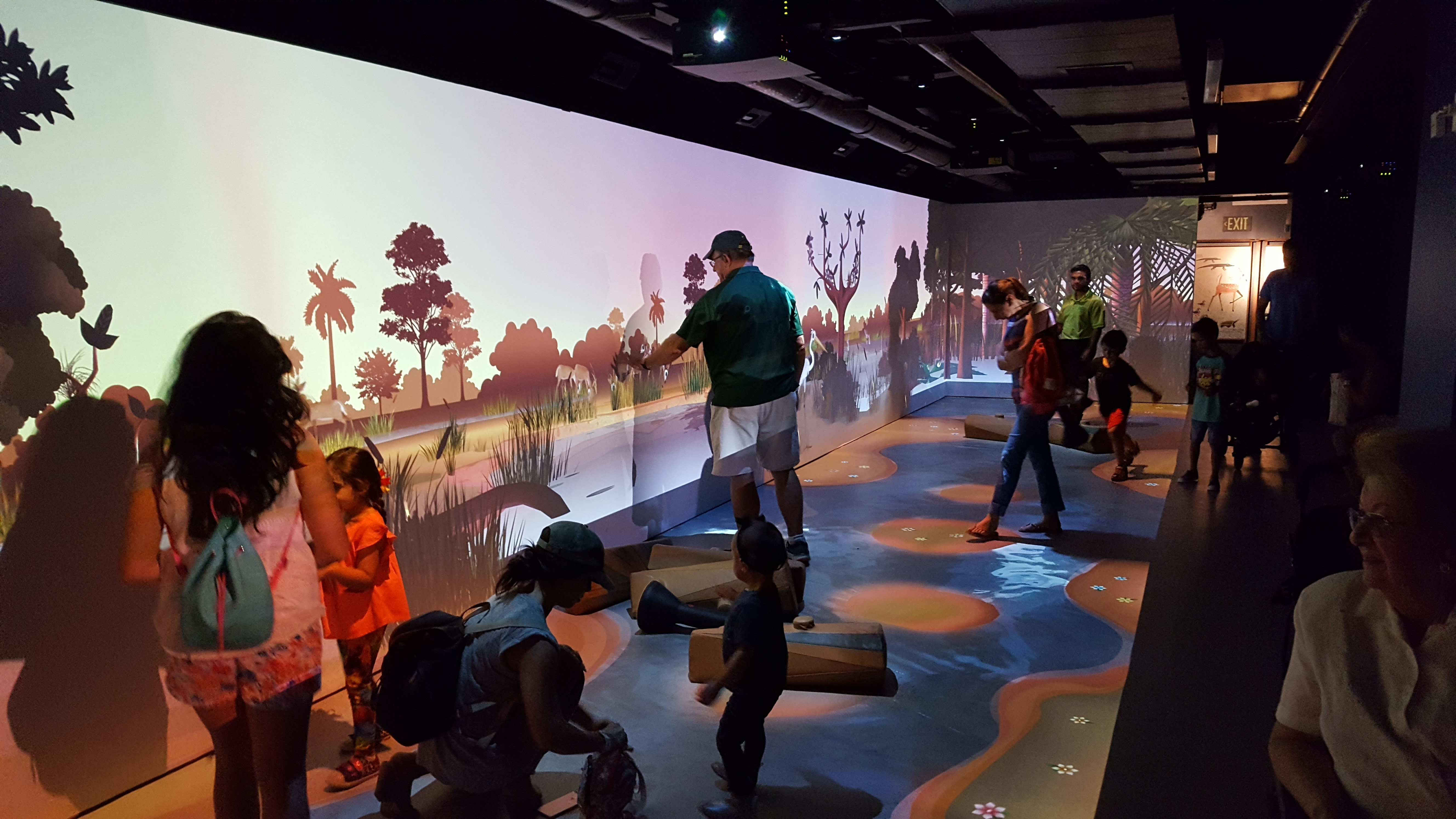 F64749242 together with File Digital  interactive  27River of Grass 27 exhibit at Frost Museum of Science in Miami additionally Reiseroute 2 Wochen Florida Usa as well Gator Attack besides Everglades National Park. on water in everglades