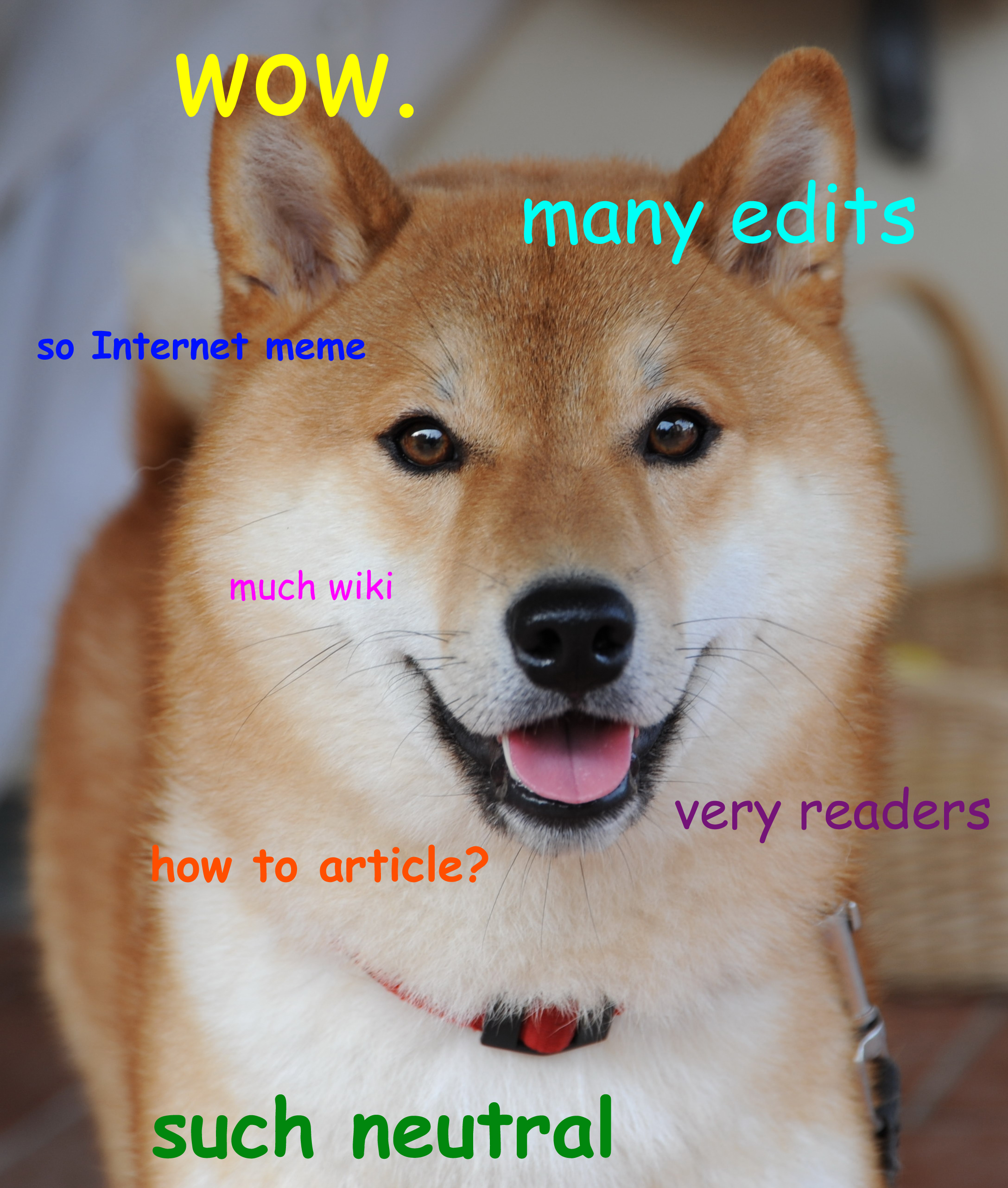 Image of a dog with multicolored statements overlaid: wow. many edits. so internet meme. much wiki. very readers. how to article? such neutral.