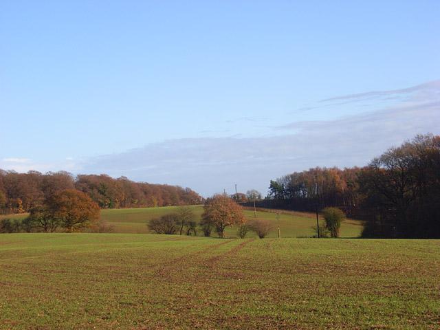 Farmland, Binfield Heath - geograph.org.uk - 1067161