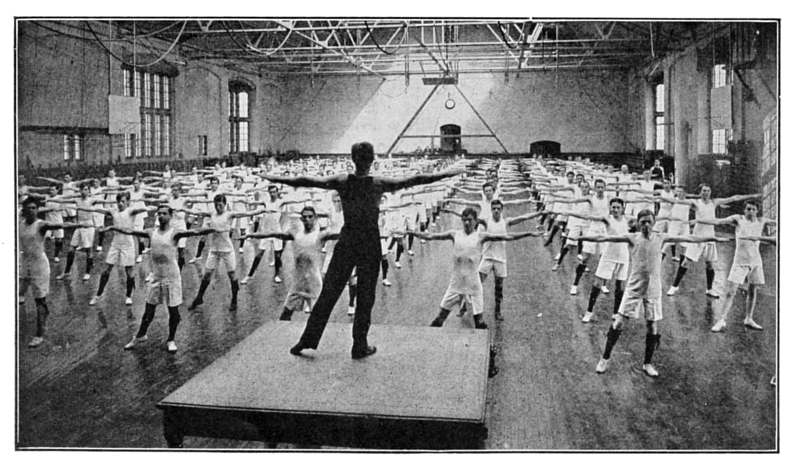 Essay on the history of gymnastics