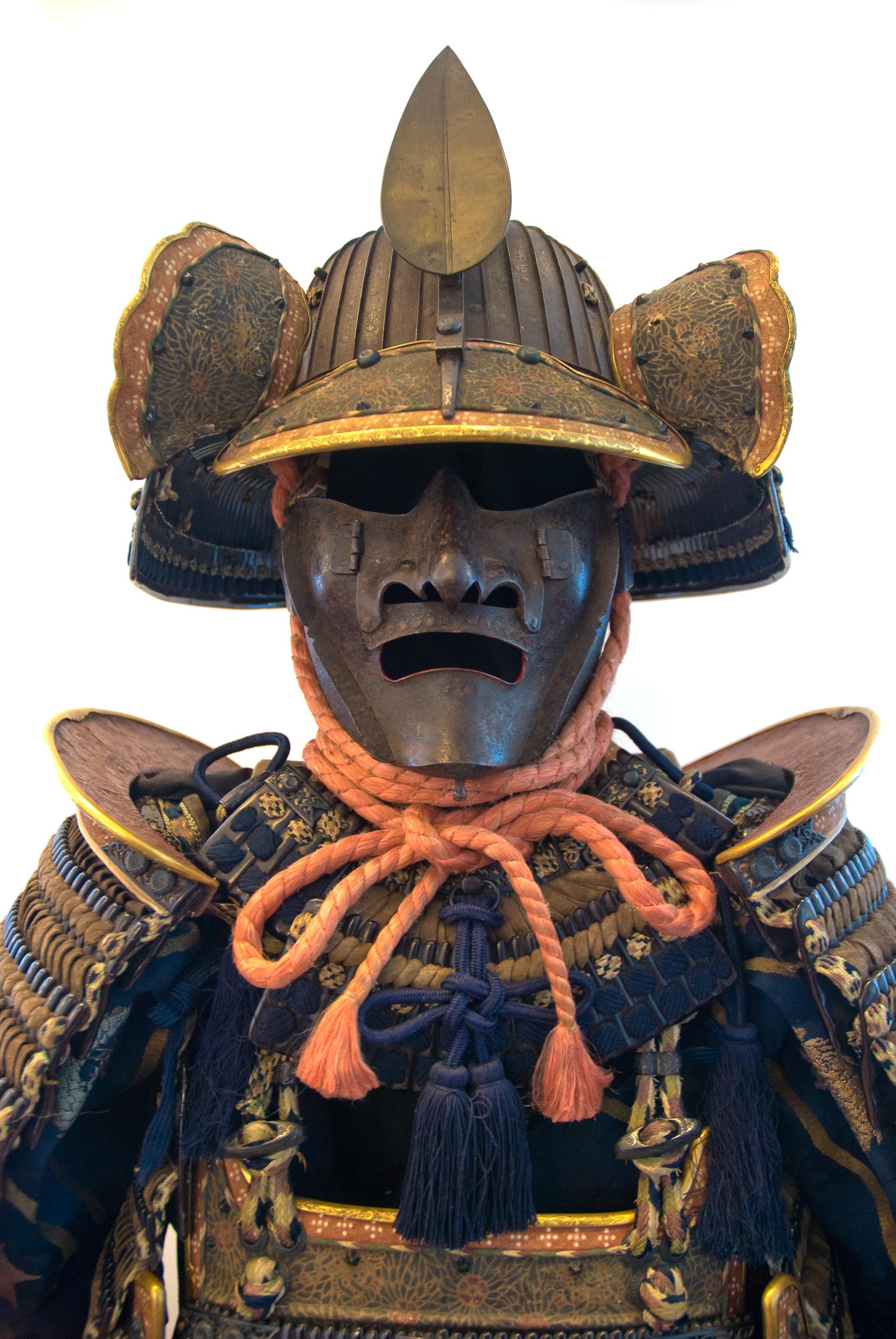 JIU-JITSU and ANCIENT JAPANESE MARTIAL ARTS -15 BOOKS ON DVD- SAMURAI KATANA SWORD