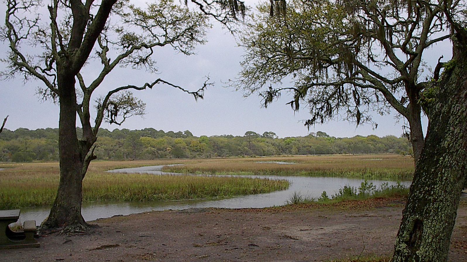 marshes of glynn