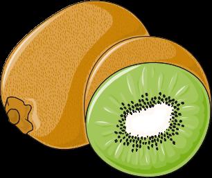 File:Kiwi fruit clip art.png - Wikimedia Commons (306 x 257 Pixel)