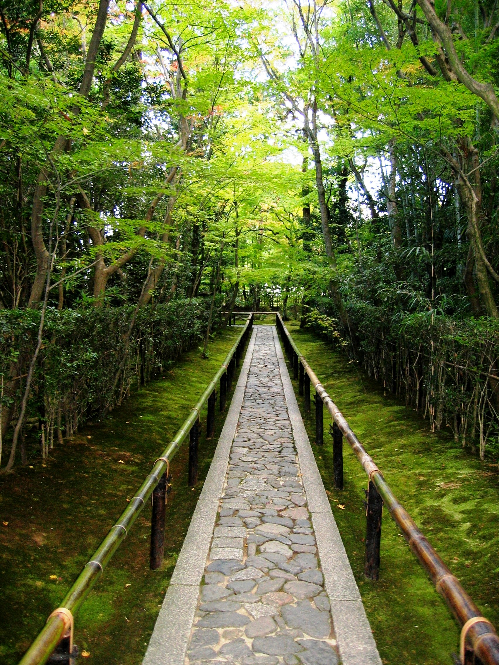 Koto-in_Zen_Temple_Kyoto_-_entrance_walkway.jpg (1704 × 2272)