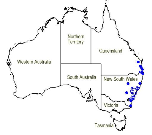 File:Map.Prostanthera linearis.jpg