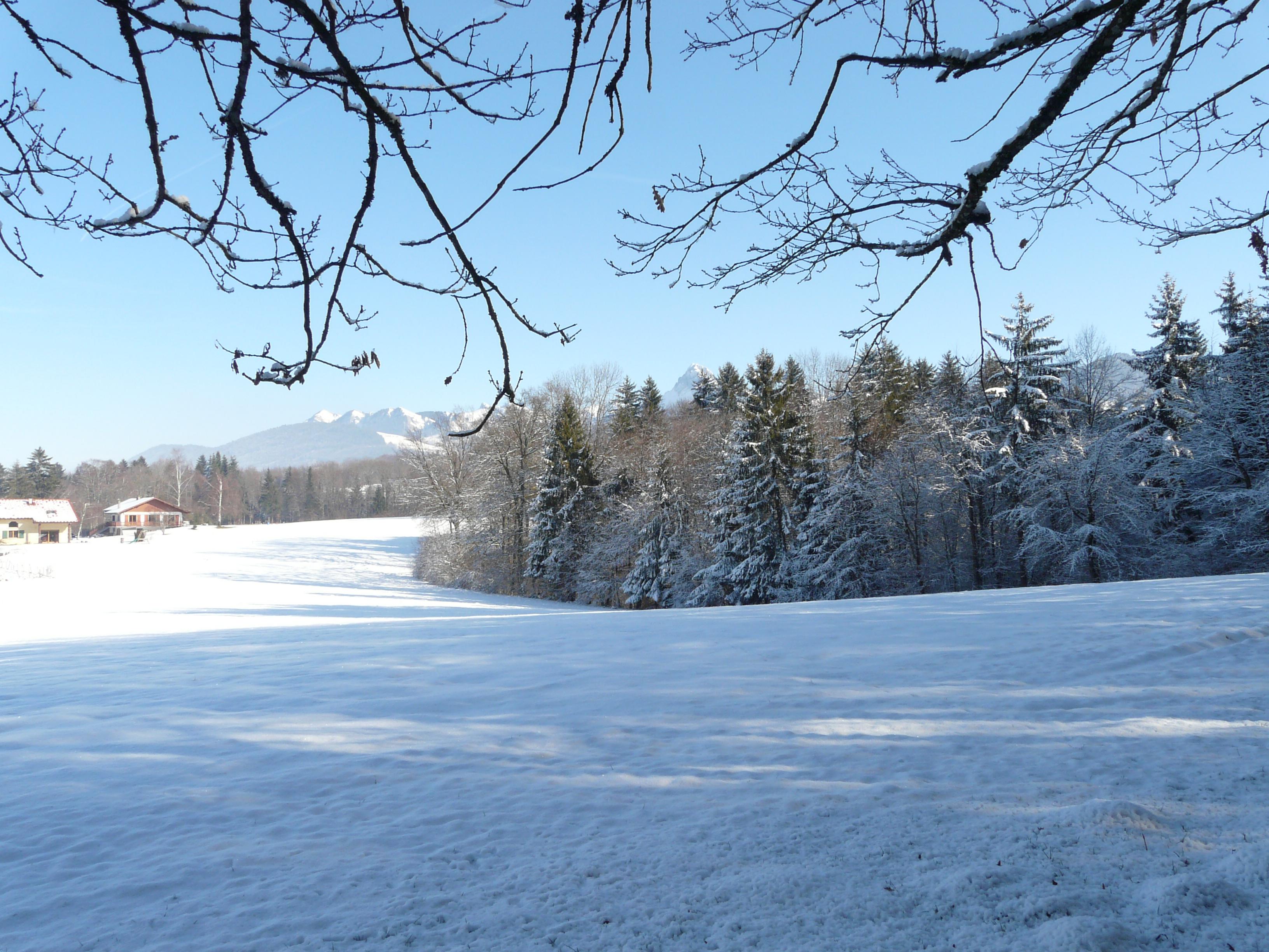 scenery spring pictures paysages d 39 hiver en images. Black Bedroom Furniture Sets. Home Design Ideas