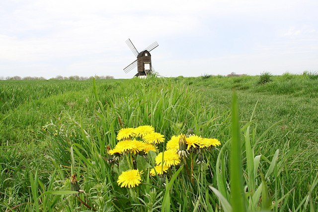 Pitstone Windmill - geograph.org.uk - 787537
