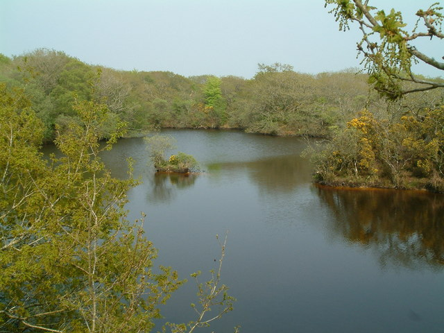 Redmoor nature reserve - geograph.org.uk - 169870.jpg