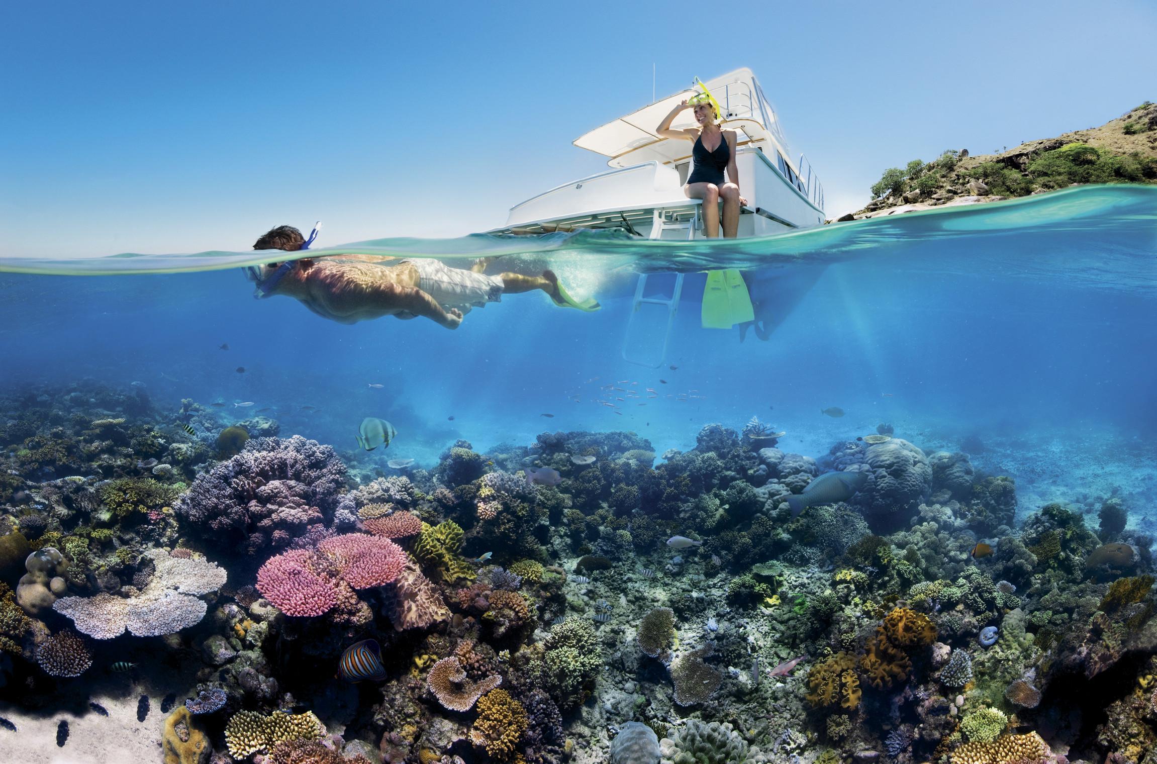 Great Barrier Reef Aktiviteter