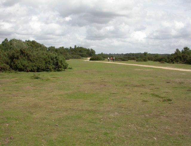 Rockford Common - geograph.org.uk - 1450884