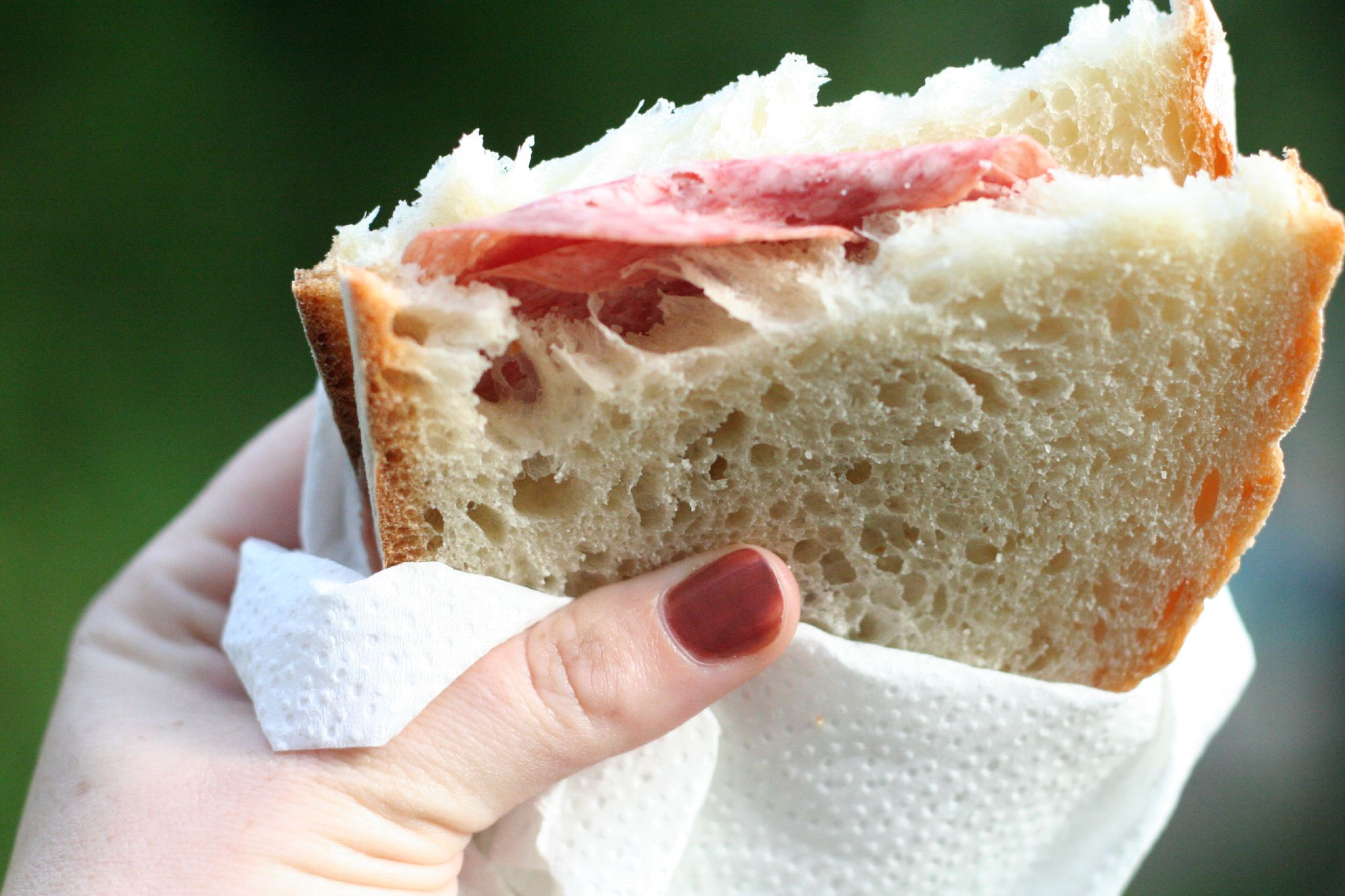 http://upload.wikimedia.org/wikipedia/commons/d/df/Salami_sandwich.jpg