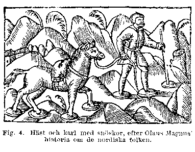 16th century depiction of Swedish traveler with horse Swedishnowshoe.PNG