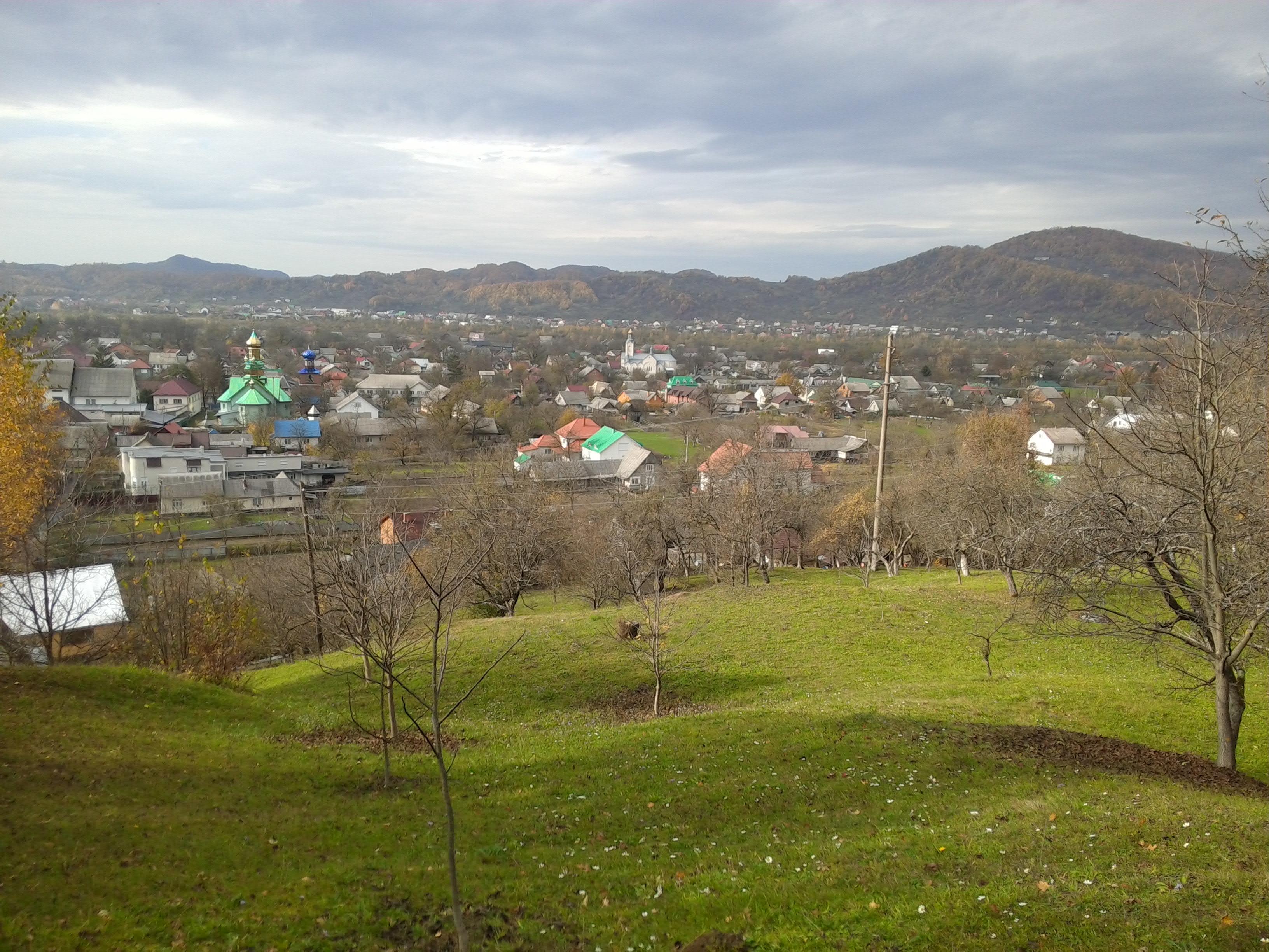Выкуп авто после ДТП в городе Терново