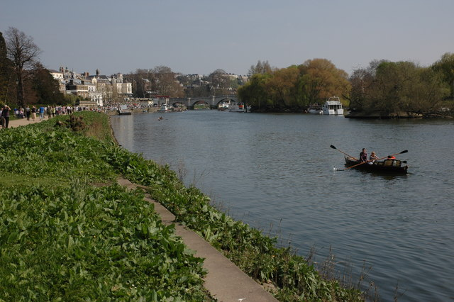 The River Thames at Richmond - geograph.org.uk - 398205