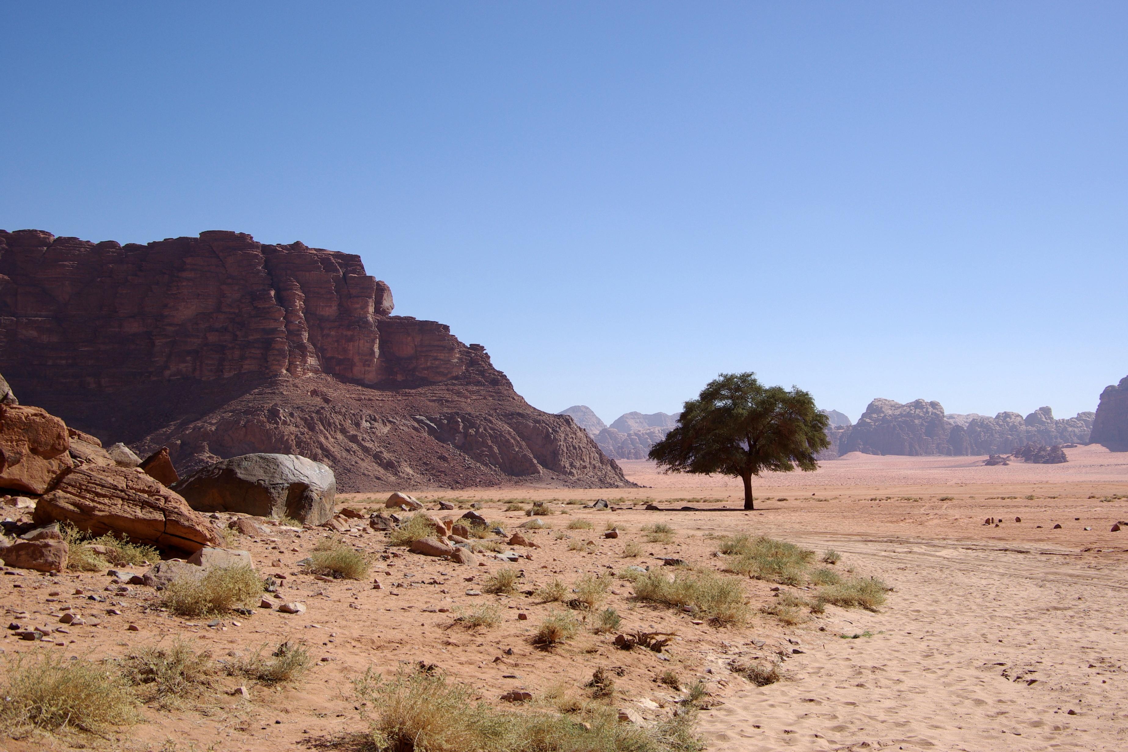 File Wadi Rum Bw 13 Jpg Wikimedia Commons