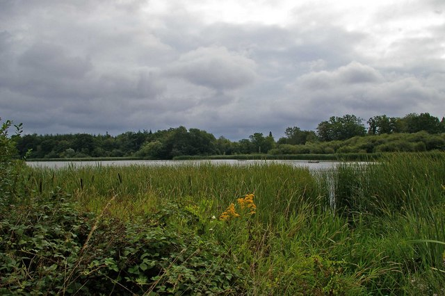 Warnham Mill Pond - geograph.org.uk - 271635