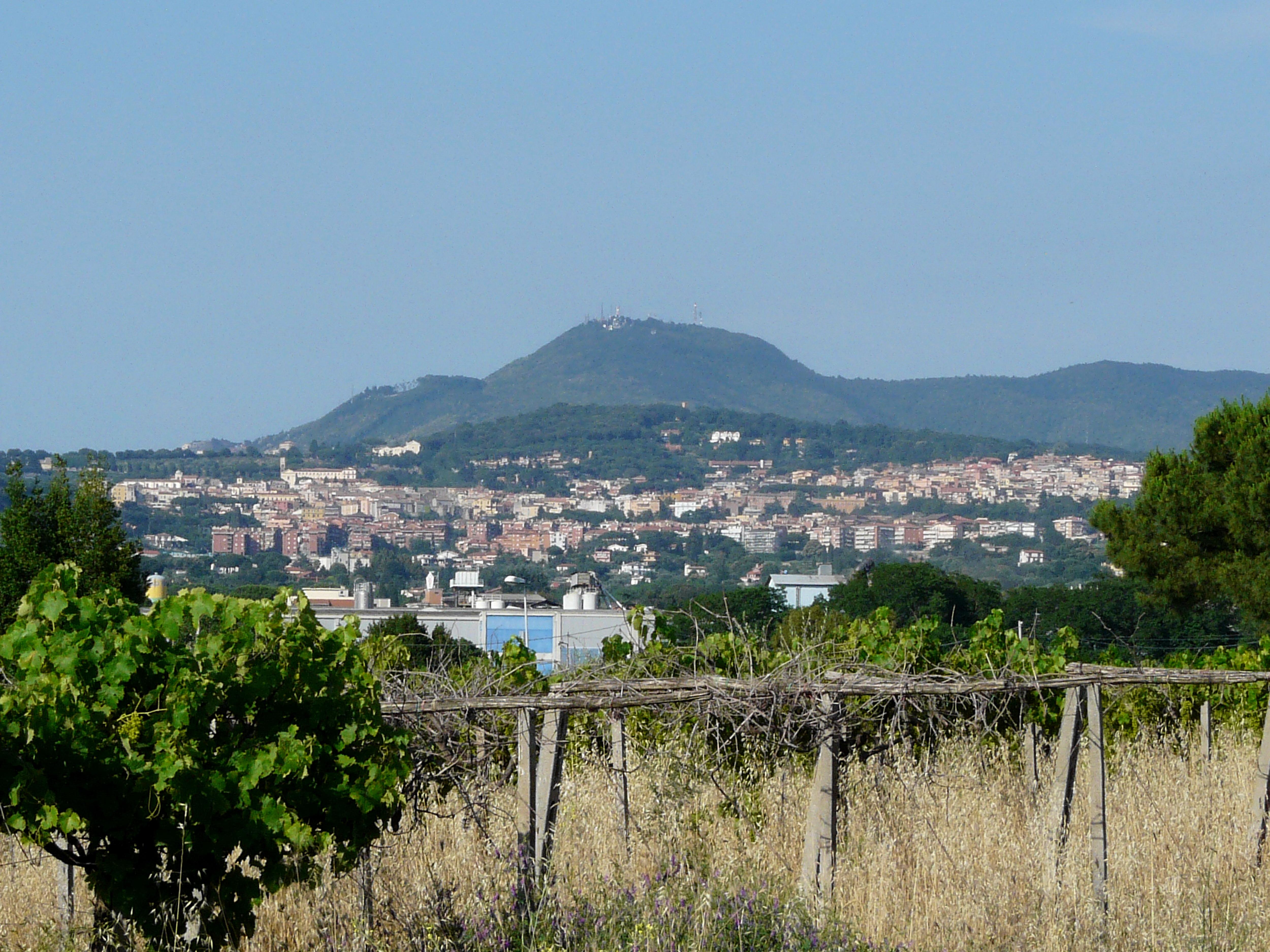Albano Laziale - Wikipedia 0f7ca9188e9f