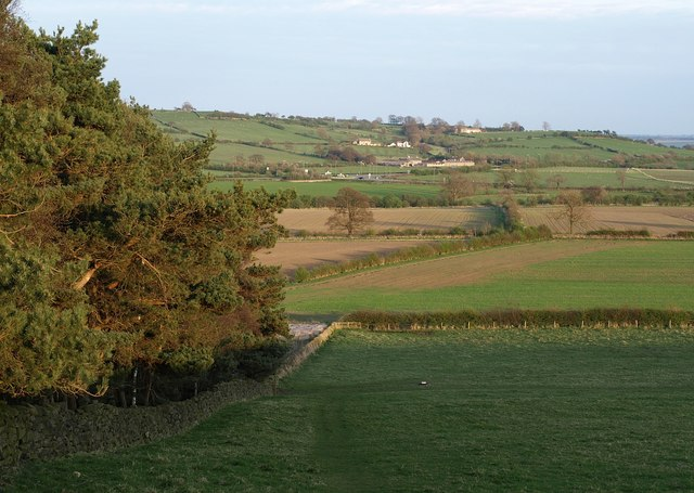 Countryside west of Buttersyke Bar - geograph.org.uk - 1257895