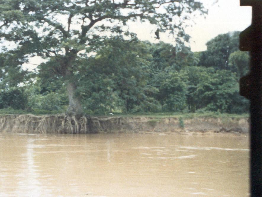Fluvial Definicion