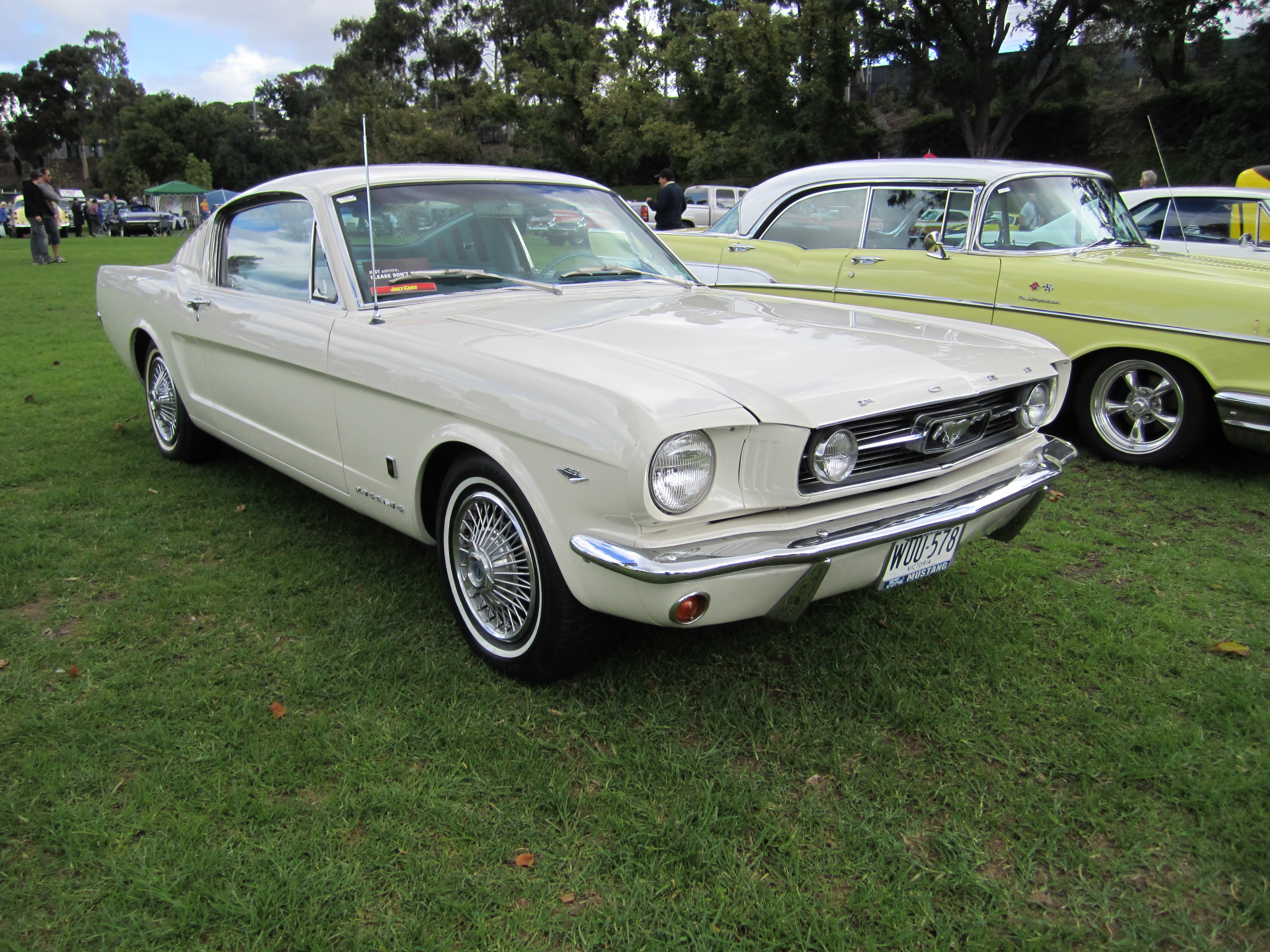 File Ford Mustang Gt Fastback 1966 Jpg Wikimedia Commons