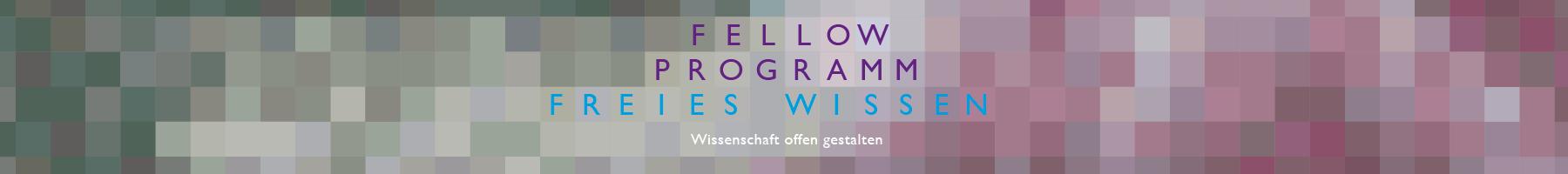Header breit Fellow-Programm Wikimedia Deutschland.jpg
