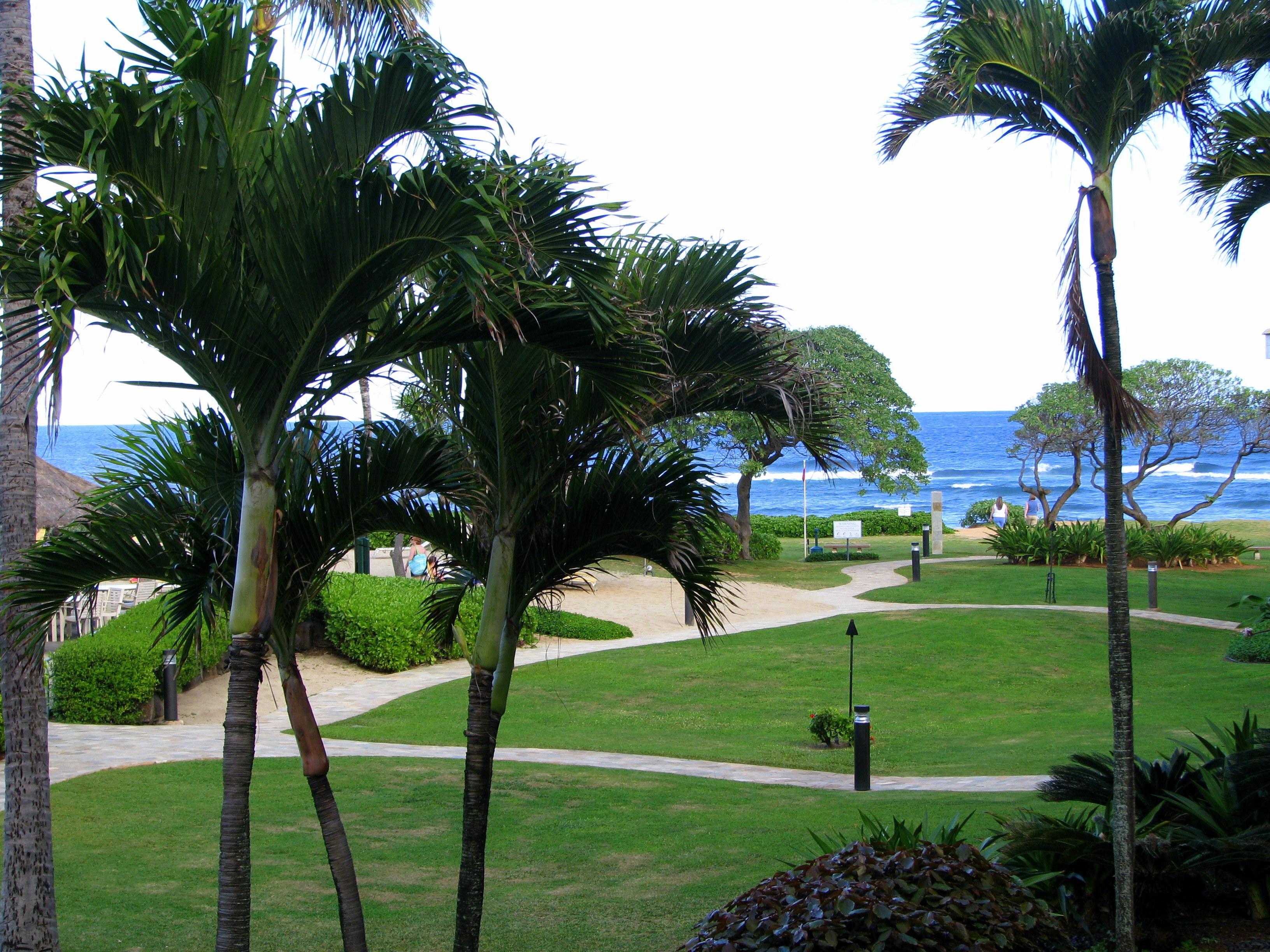 File:Hilton Kauai Beach Resort Coutyard (3294661358).jpg - Wikimedia ...
