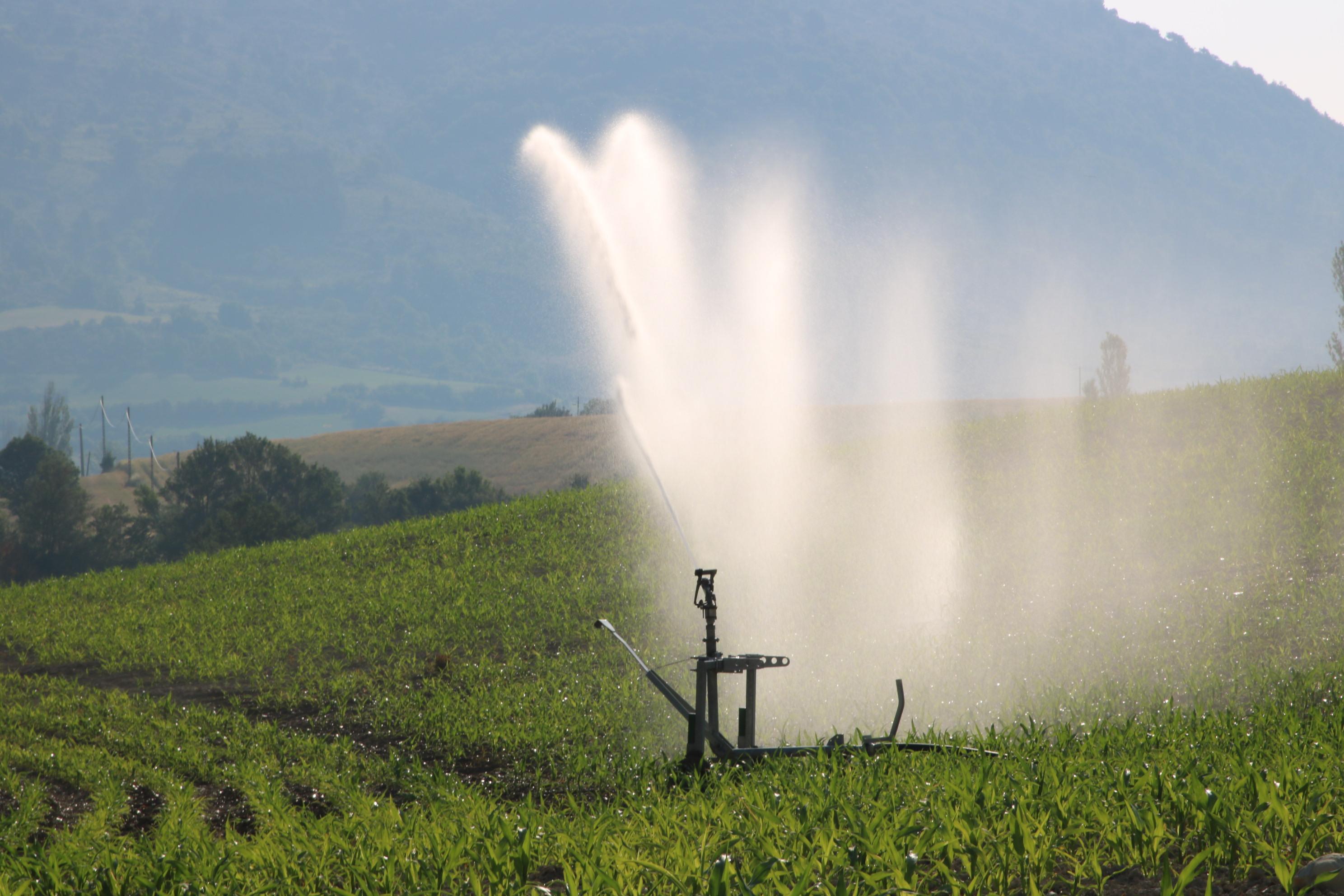 Irrigation_d%27un_champ_de_mais_dans_la_vall%C3%A9e_de_la_M%C3%A9ouge_%28Dr%C3%B4me%29.jpg
