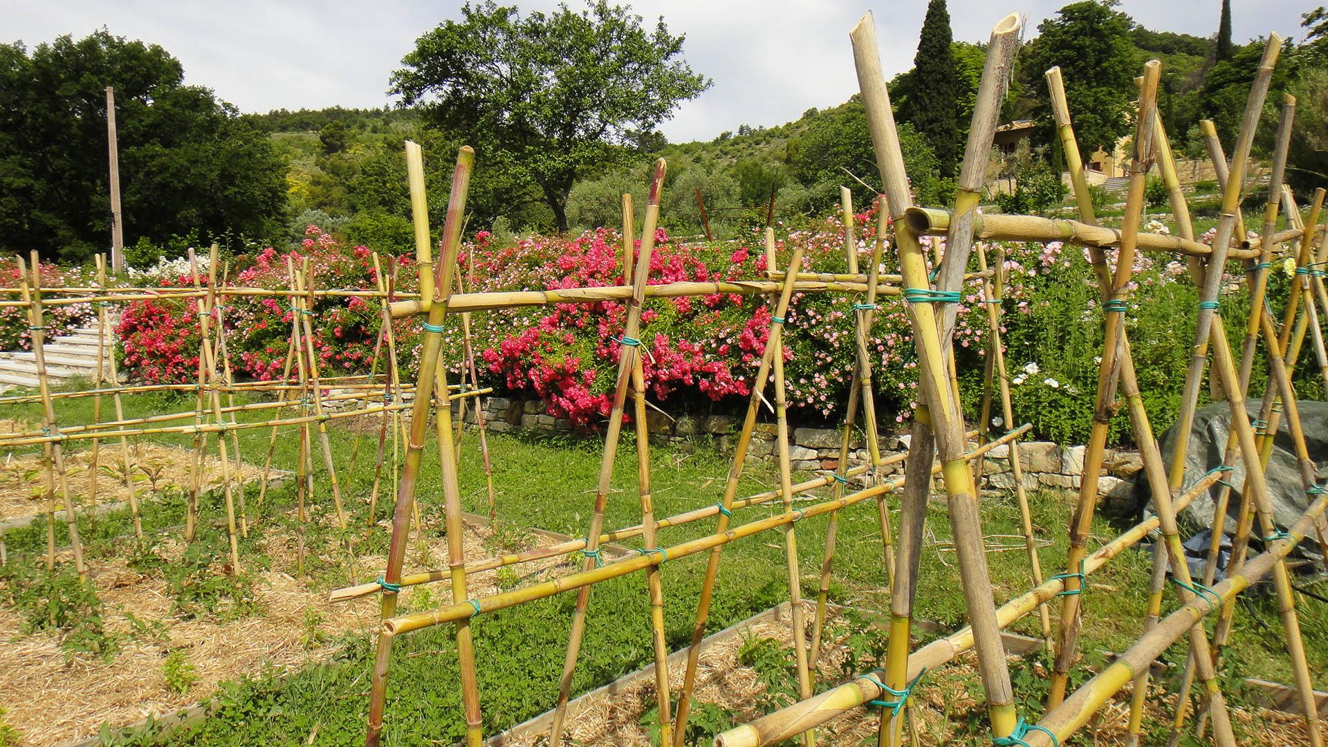 bac de jardin en bois