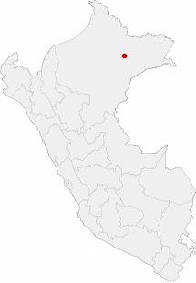 Location of the city of Iquitos in Peru.png