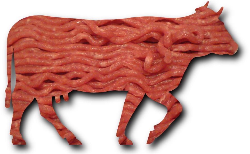 File:Minced beef meat cow cattle shadow.png - Wikimedia ...