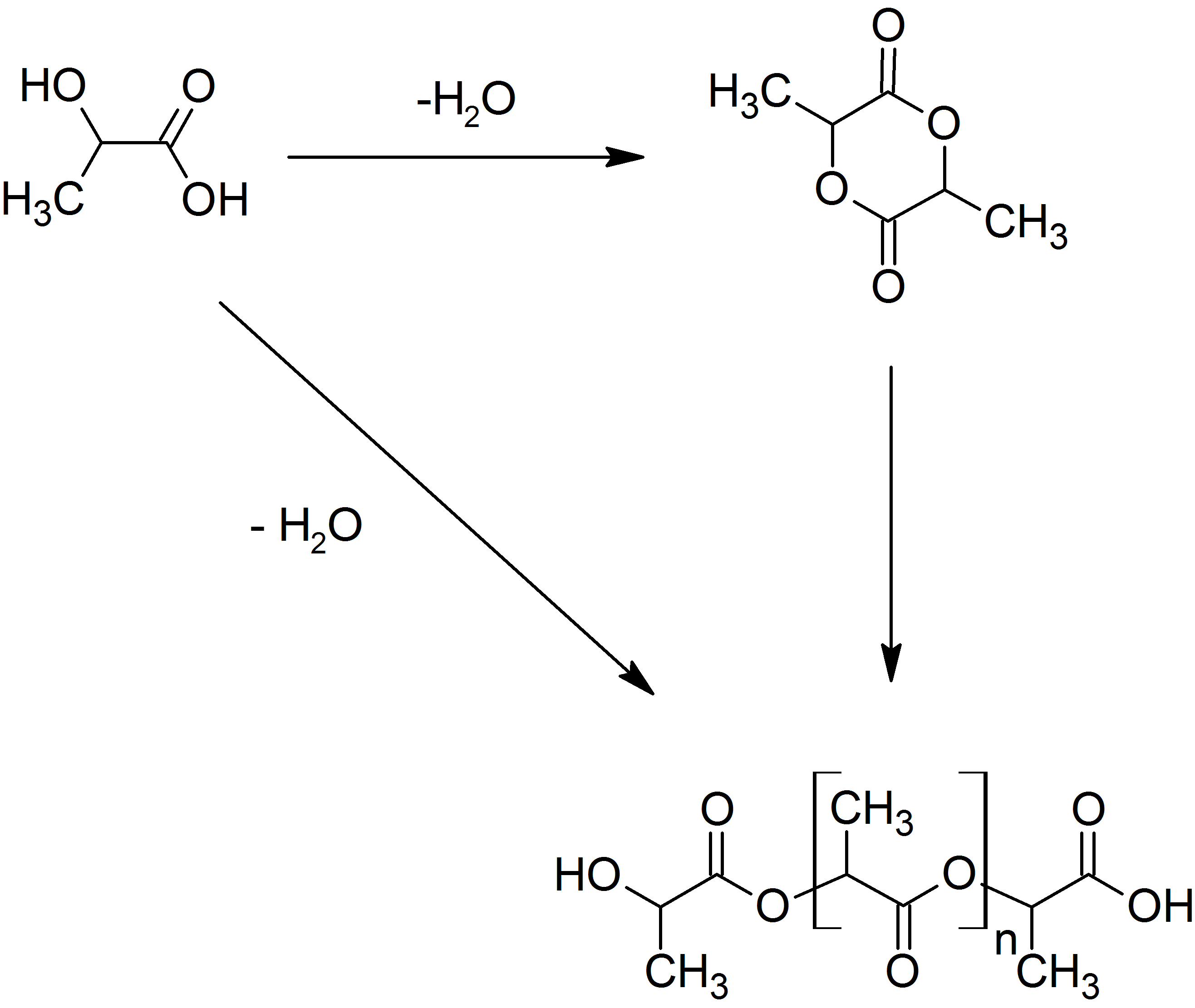to synthesise polylactic Polylactic acid (pla) products are polymers (plastics) manufactured from lactic acid lactic acid is an organic molecule which occurs naturally in living organisms.