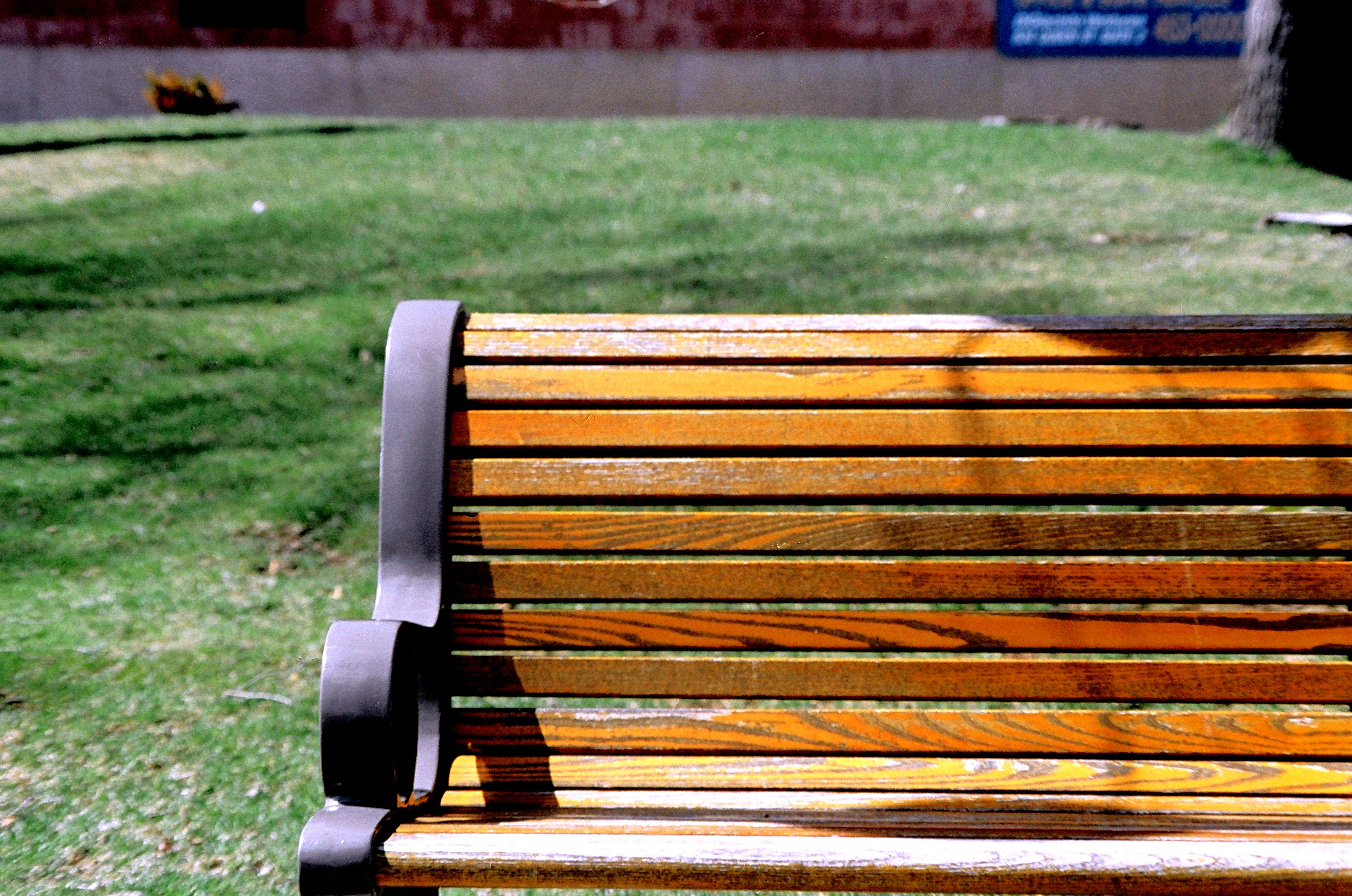 File:Park bench WPC.jpg - Wikimedia Commons for Park Background With Bench  285eri