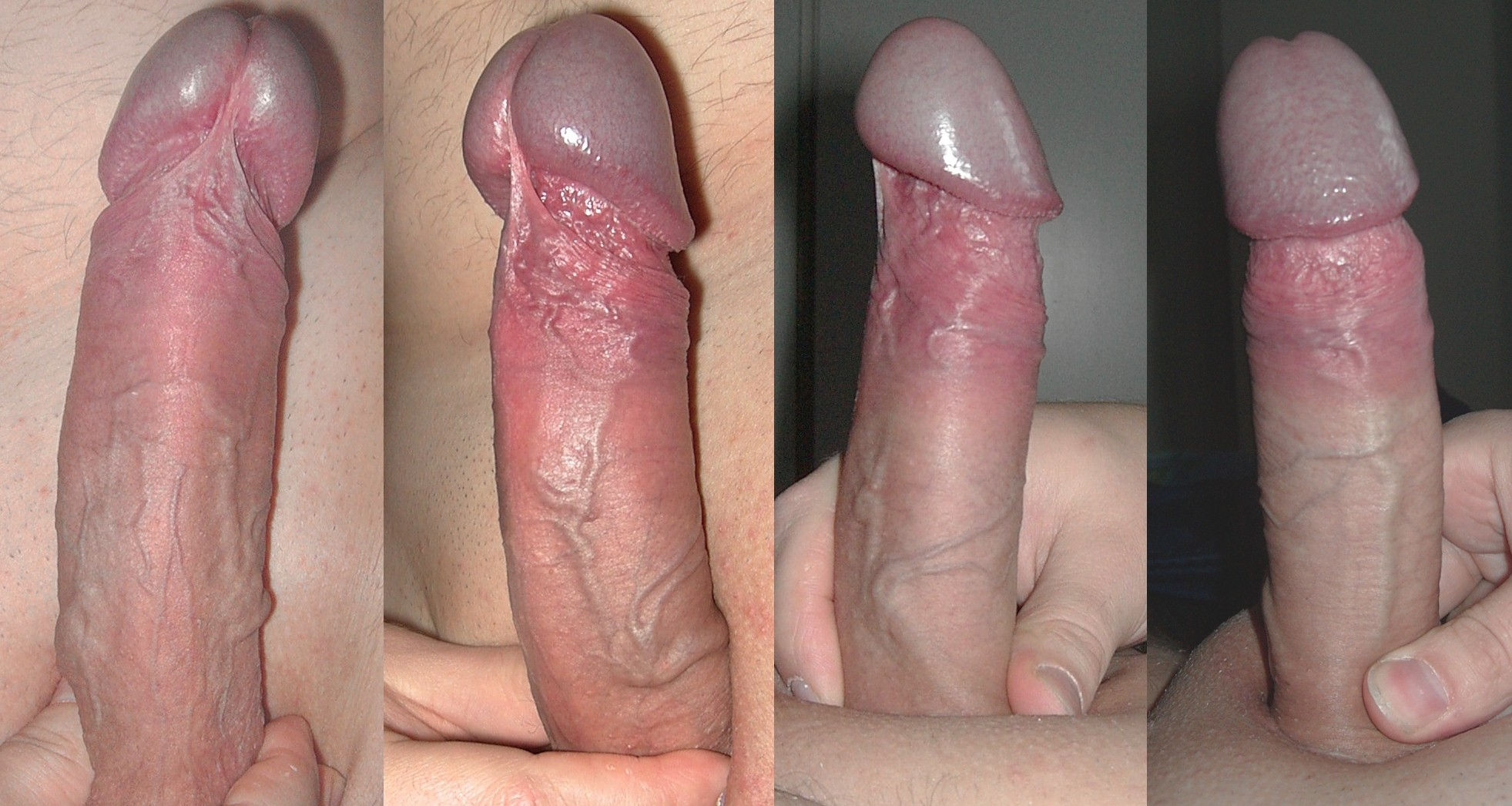Different penis styles for