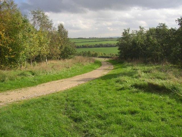 Permissive bridleway, Temple Newsam Park, Colton - geograph.org.uk - 263644