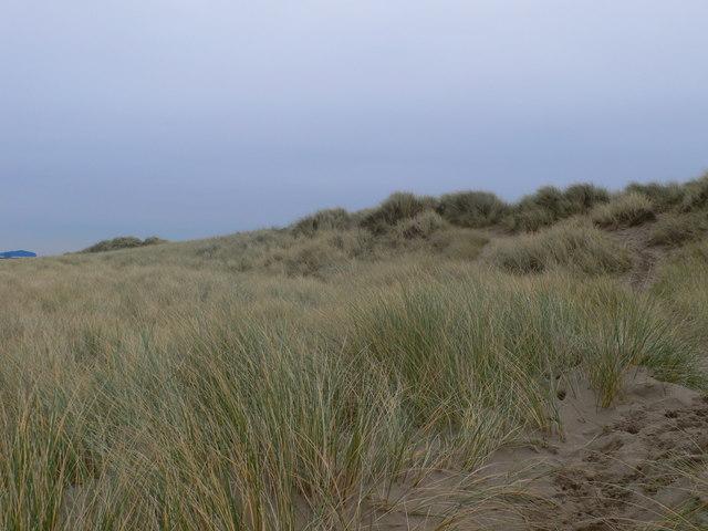 Sand dunes, Prestatyn - geograph.org.uk - 655438