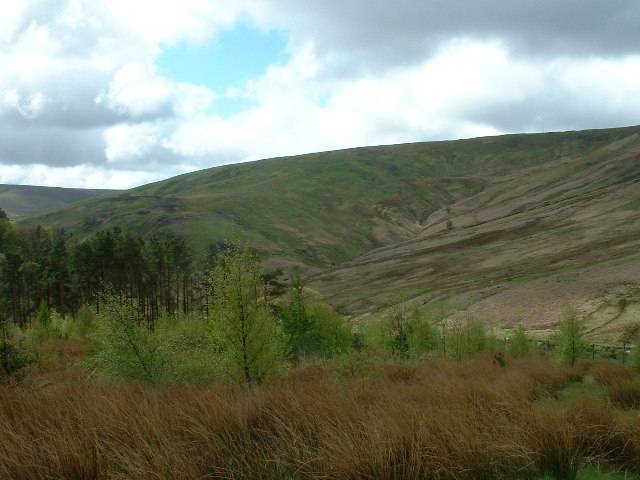 Trough of Bowland - geograph.org.uk - 69042